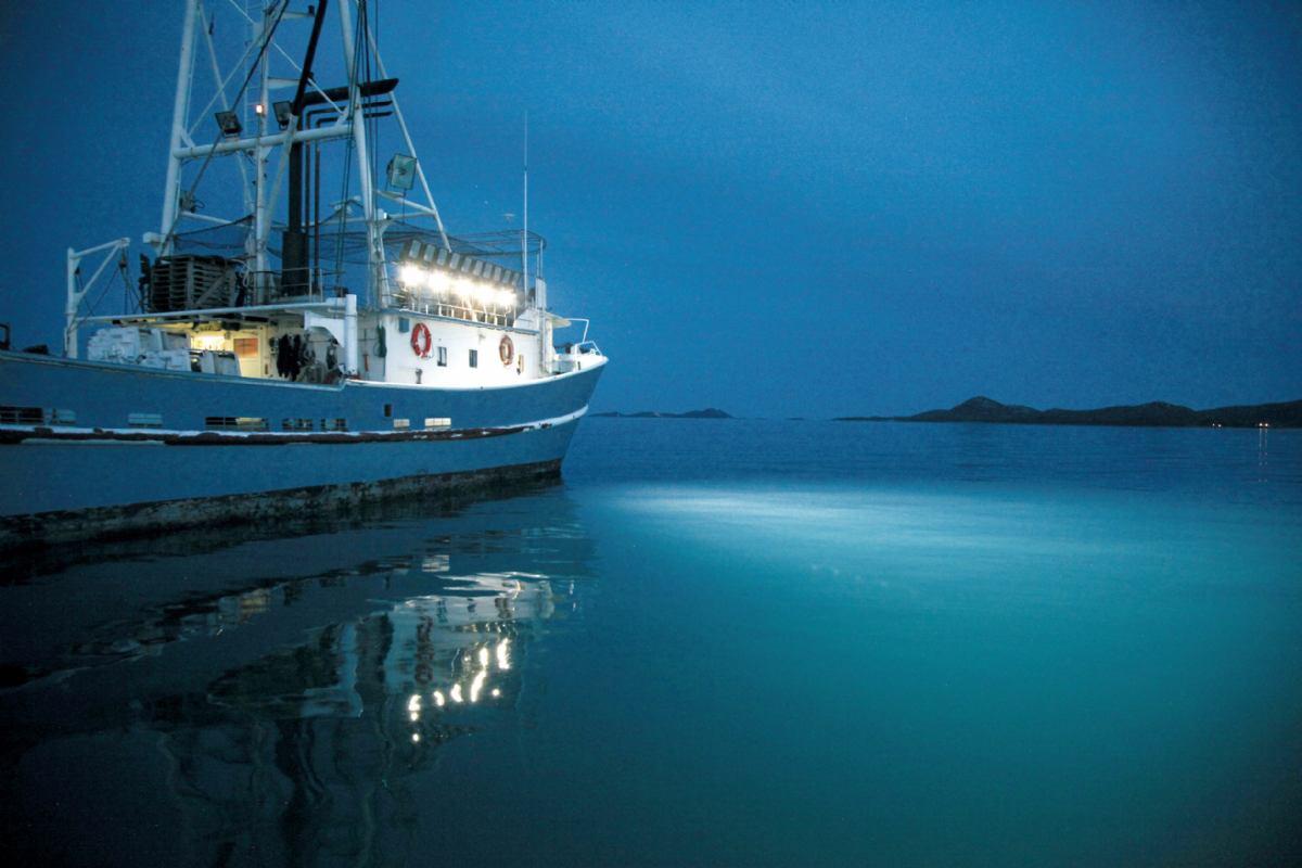 LED svjetla na ribarici