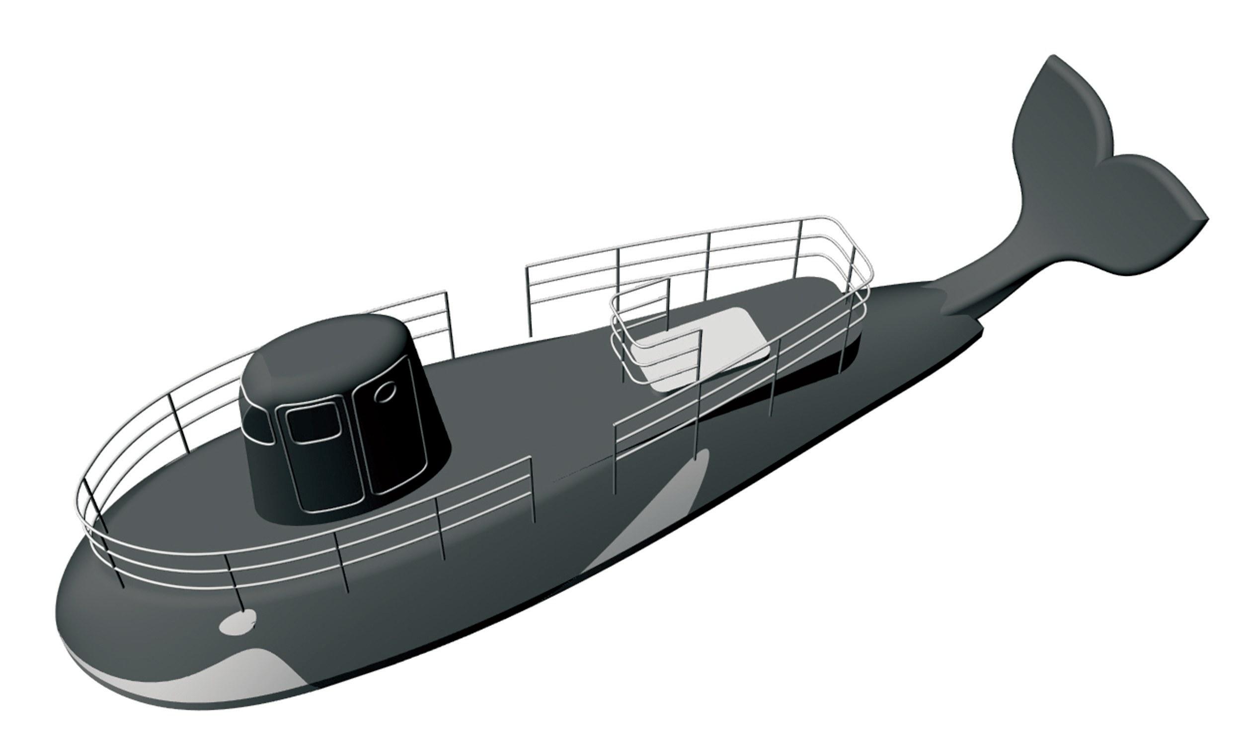 Orca 34