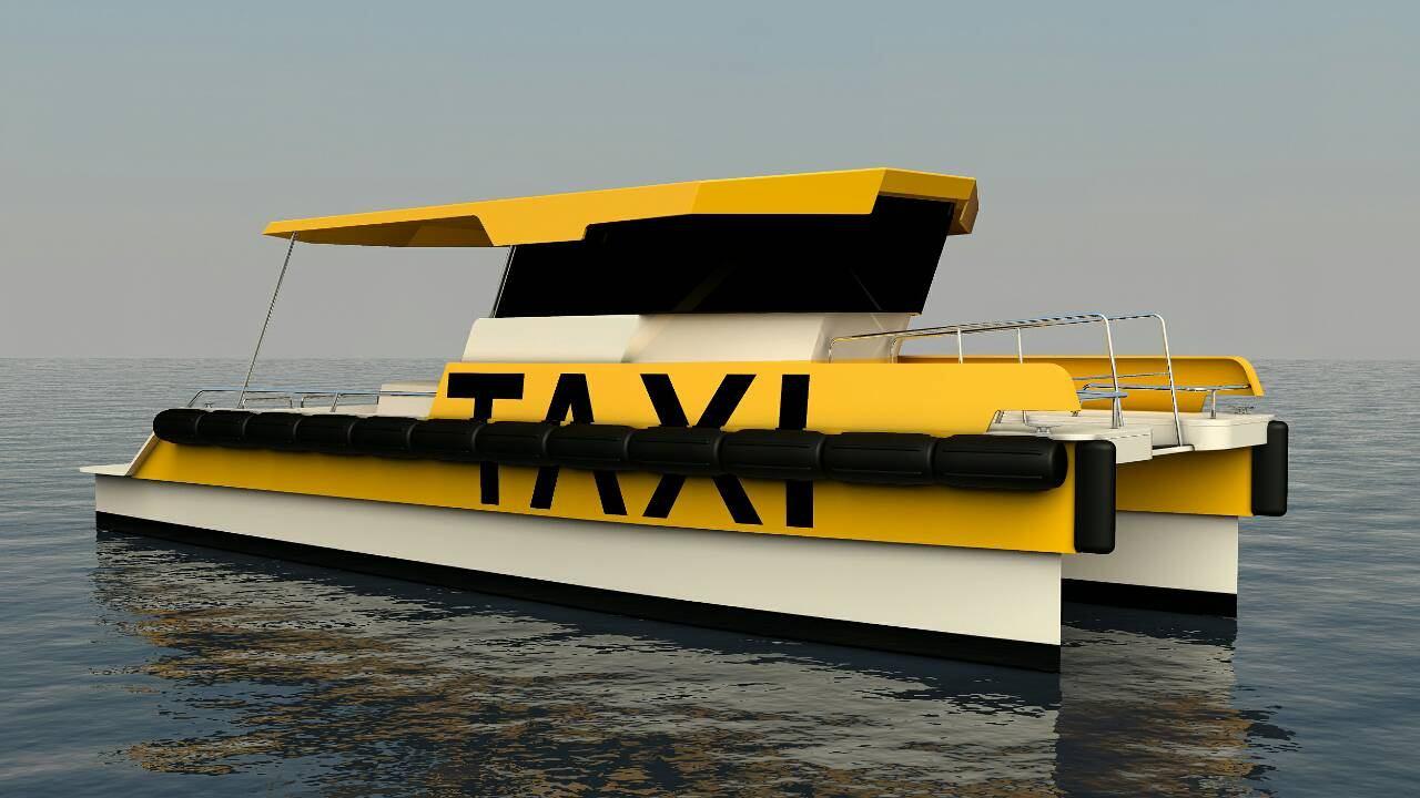 Agena Marin Taxi Cat
