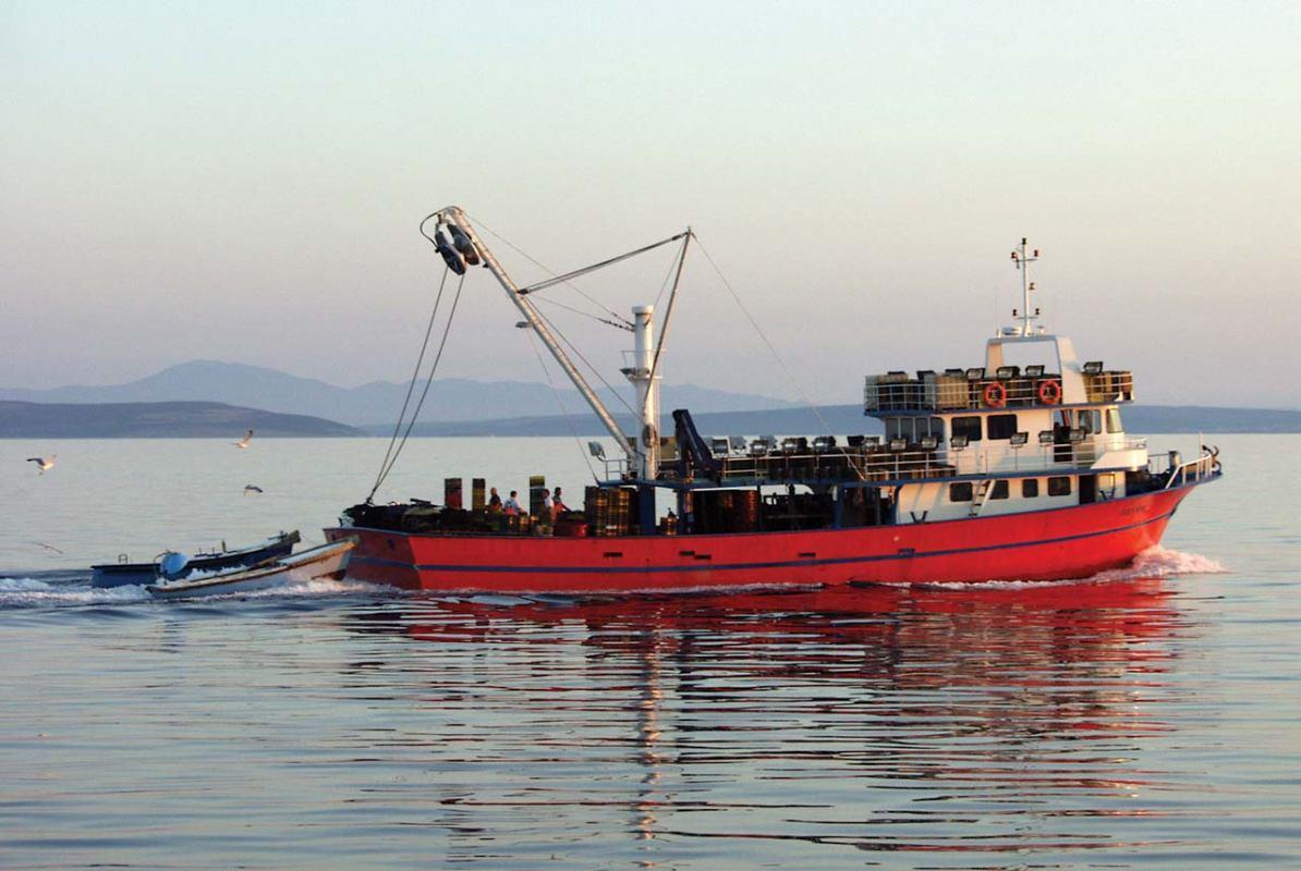 Hrvatske ribare neće ograničavati kvote