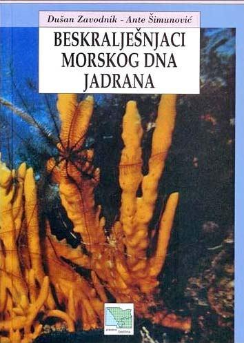 BESKRALJEŠNJACI MORSKOG DNA JADRANA
