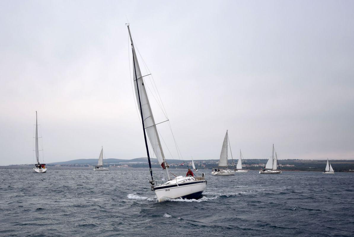 Green Sail, zelena regata otoka Brača