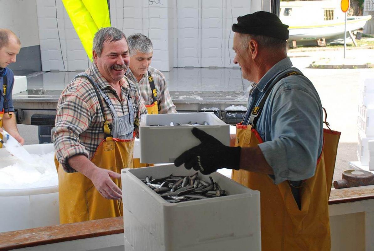 Odgođeno stupanje na snagu novih ribarskih pravilnika