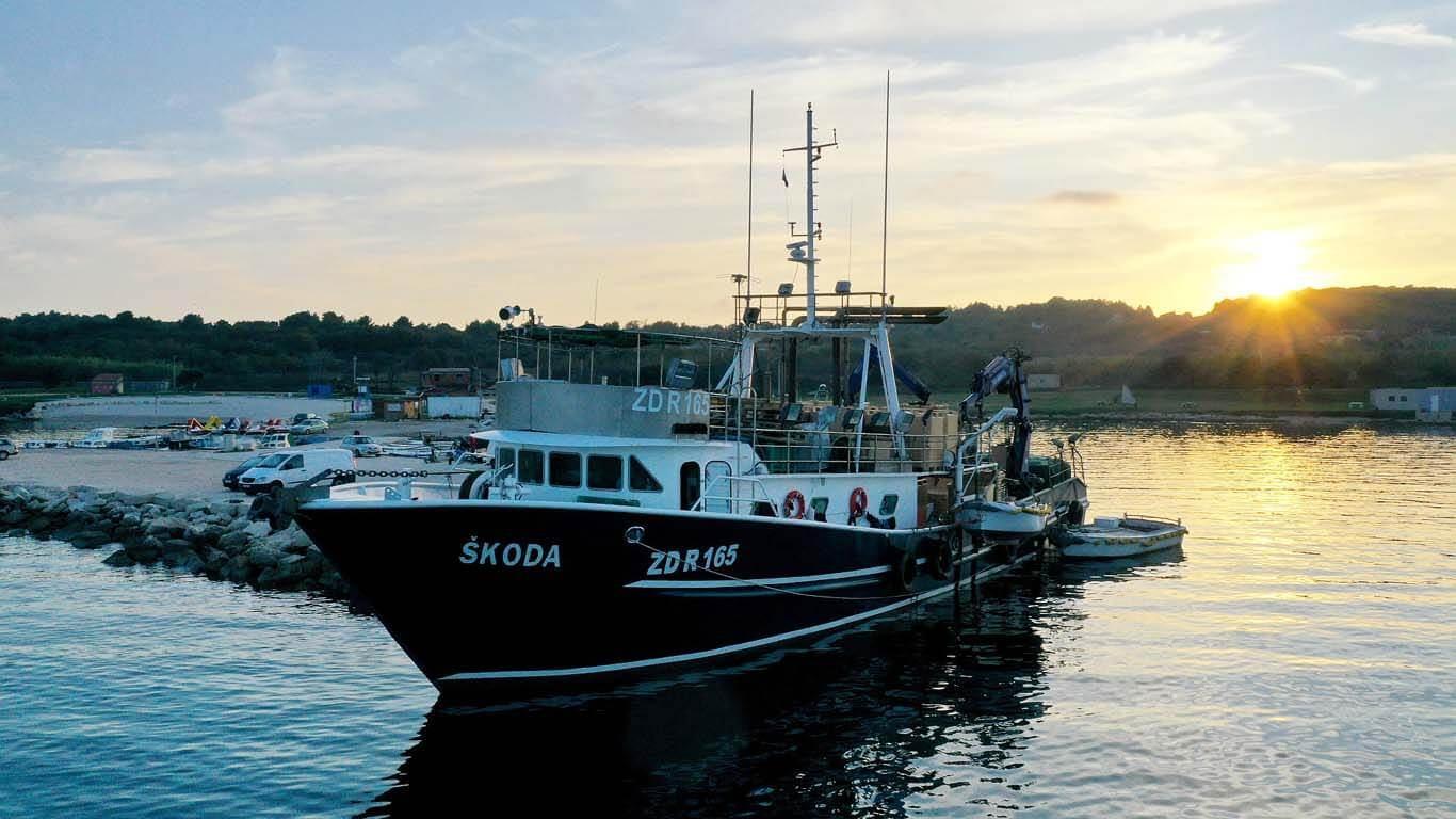 Virtualno ribarenje plivaricom