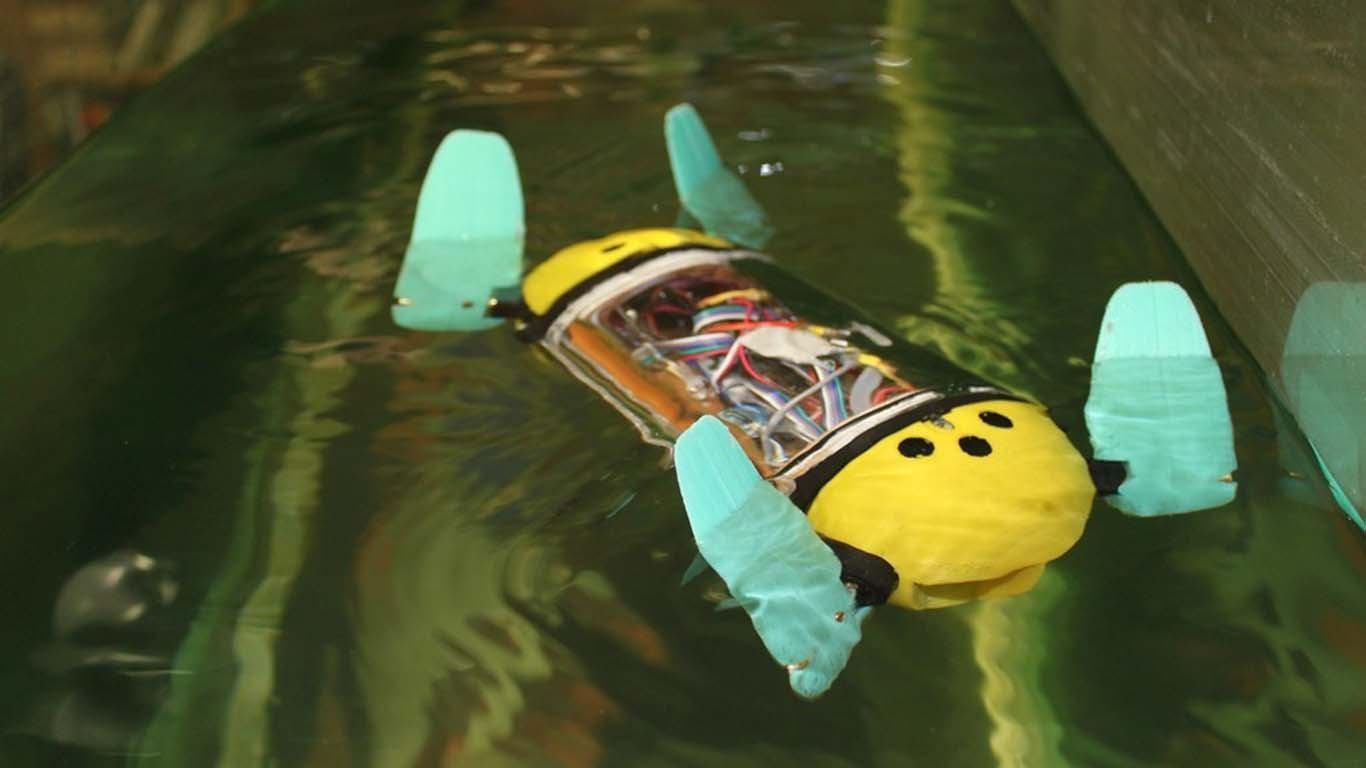 Kornjača kao idealna forma za podvodne dronove za rad u ribogojilištima