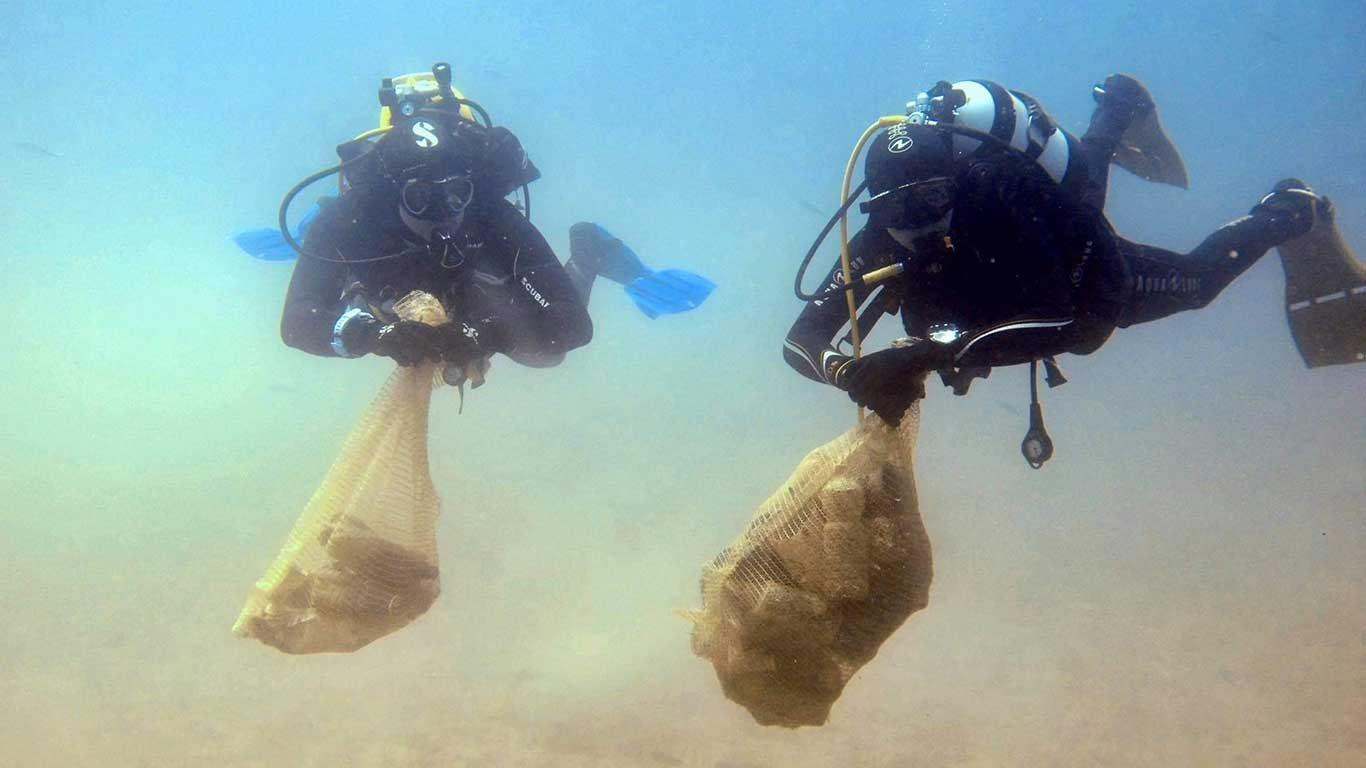 Velike akcije čišćenja podmorja u ACI marinama Dubrovnik i Šimuni