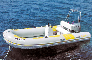 Dumi MH450