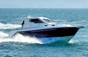 Sas Vektor 950