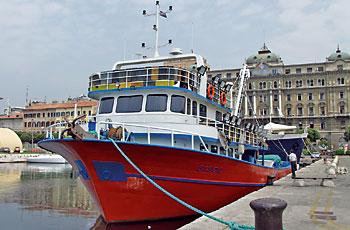 Hrvatsko ribarstvo na putu u EU