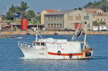 Obnova ribarske flote