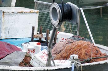 Alati gospodarskog ribolova