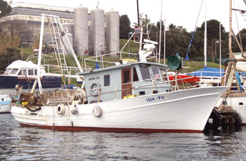 Ulovi hrvatskih ribara