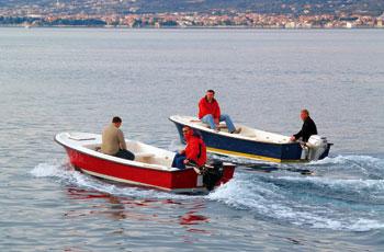 Ribar 480