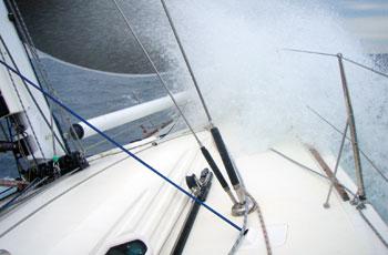 Jabuka 2008