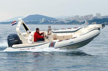 Barracuda 590